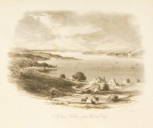 Sydney Harbour from Watson's BayTERRY, F.C.# 4338