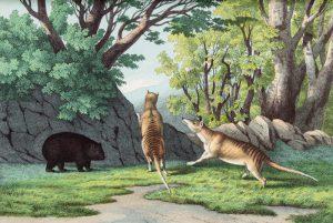 [THYLACINE] Wilde Thiere aller Zonen. Ihre Gewohnheiten und Lebensweise, ihr Nutzen und SchadenKOLB, C.F.A. (Christian Friedrich August)# 13774