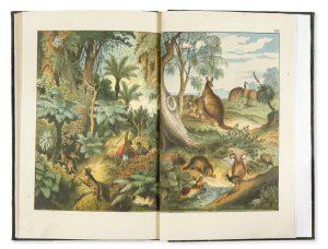 Atlas d'histoire naturelle : coup d'oeil sur l'histoire naturelle des cinq parties du monde.WAGNER, Hermann# 11386