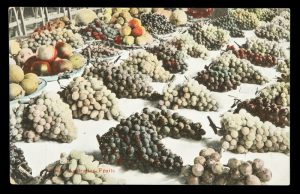 [WINE] South Australian fruits