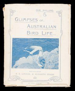Glimpses of Australian bird life : thirty-one original photographs direct from natureHALL, Robert# 13137