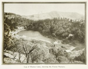 A photographic souvenir of Mount Gambier South Australia