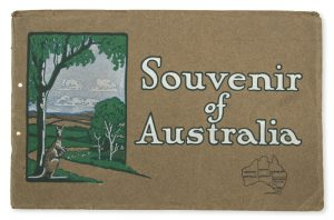Souvenir of AustraliaROSEBRAY, A. Earlington# 10571