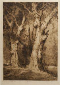 Tuarts of the South West.VAN RAALTE, Henri (1881 - 1929)# 2901