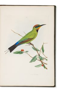 A natural history of the birds of New South Wales,