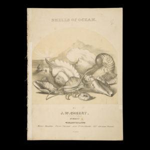 # 15626  CHERRY, J. W. (John William), 1824-1869; LAKE, J.W.; DEGOTARDI, Johann Nepomuk, 1823-1882.  [SHEET MUSIC] Shells of ocean / words by J.W. Lake ; music by J.W. Cherry.
