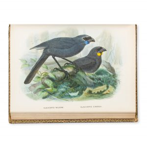 # 15783  BULLER, Walter Lawry (1838 - 1906)  A history of the birds of New Zealand.