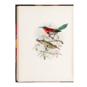 # 15787  SHELLEY, Captain G. E.  A monograph of the nectariinidæ, or family of sun-birds.