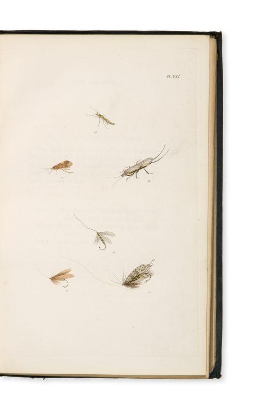 The fly fisher 39 s entomology douglas stewart fine books for Fly fishing entomology